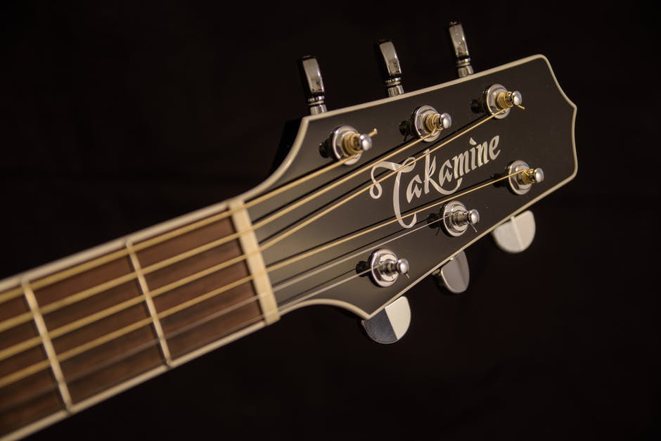 Brown And Black Takamine Guitar Headstock