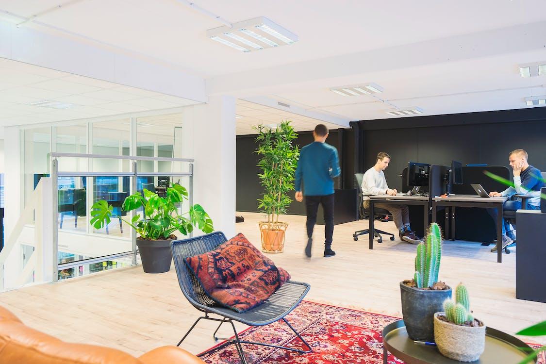 birou, clădire de birouri, femei de afaceri