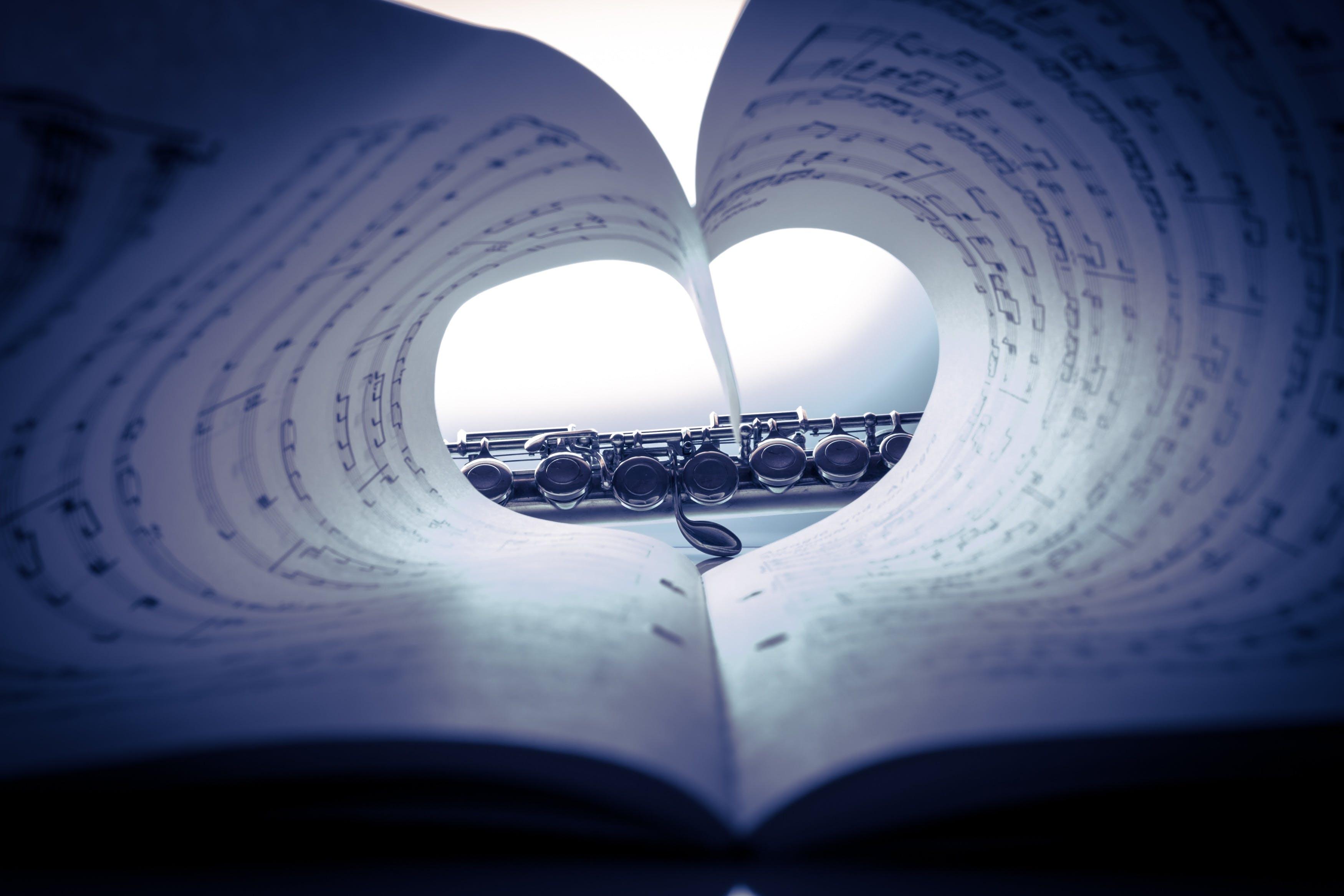 Δωρεάν στοκ φωτογραφιών με καρδιά, Μουσικές νότες, μουσική, μουσικό όργανο