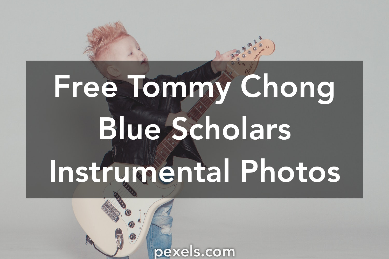 1000+ Engaging Tommy Chong Blue Scholars Instrumental Photos