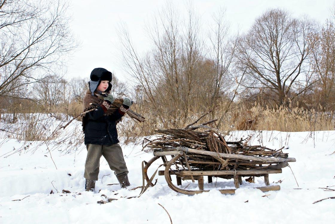 Kid Holding Brown Log