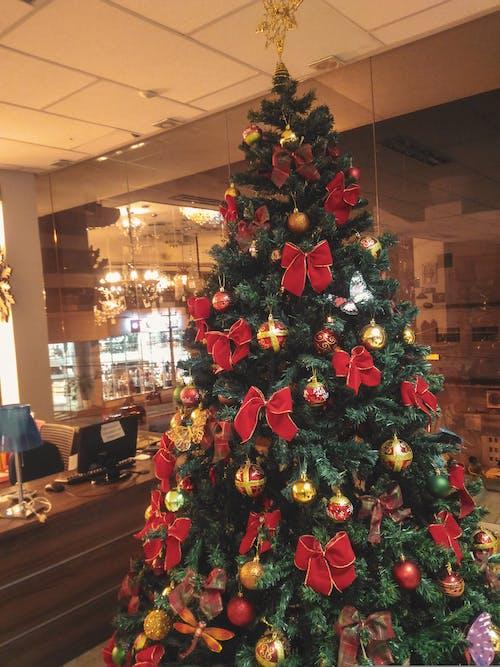 Free stock photo of christmas, christmas day, christmas decor, christmas lights