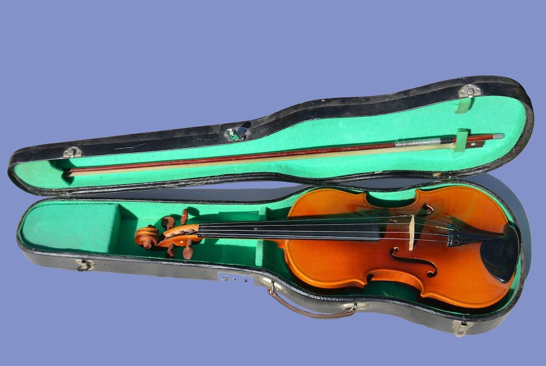 instrument muzyczny, instrument strunowy, skrzypce