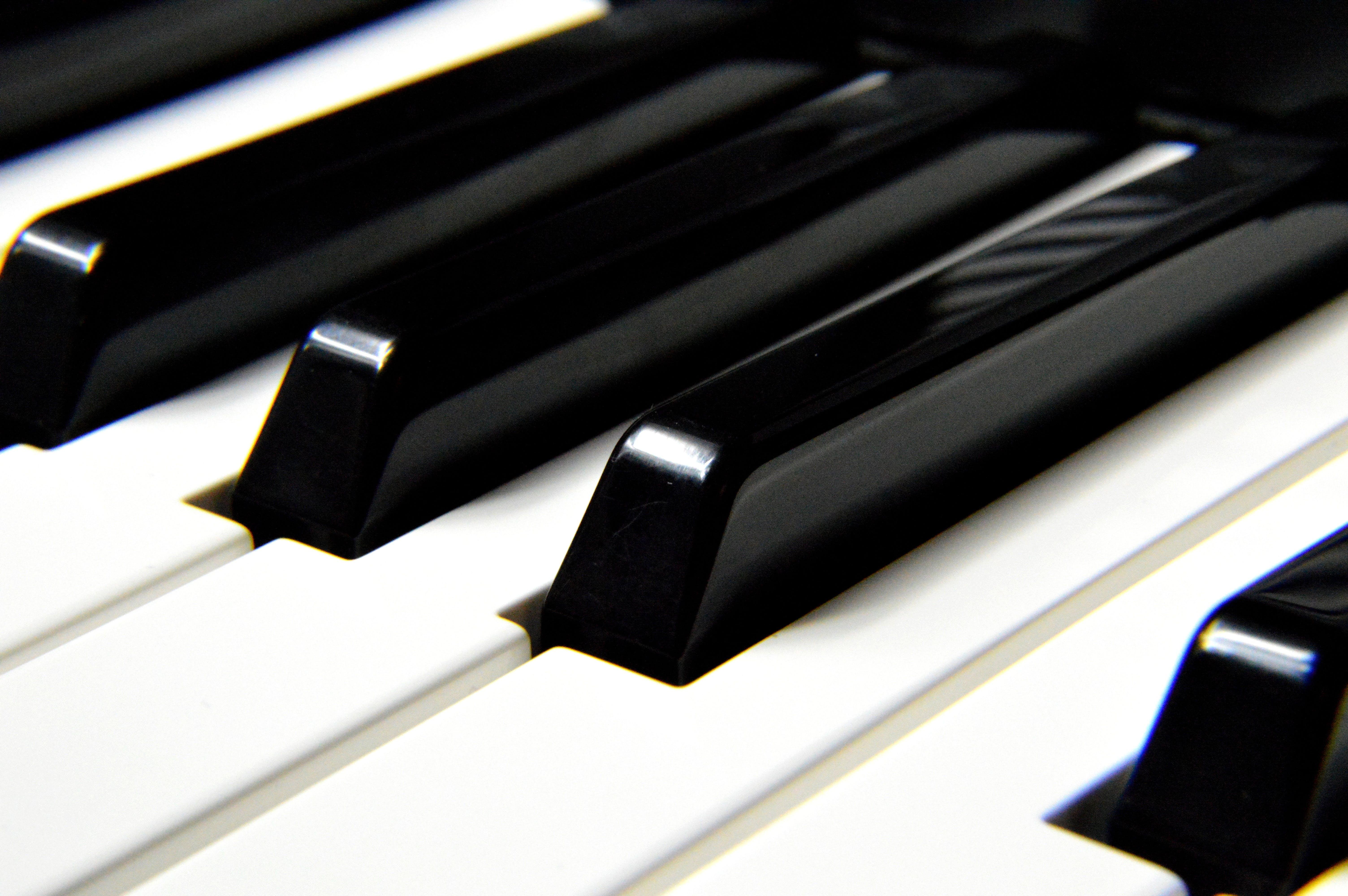 instrument musical, piano, primer pla