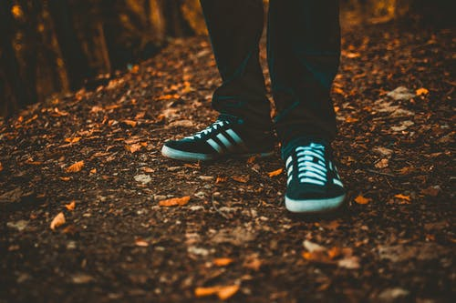 Person In Adidas Sneakers