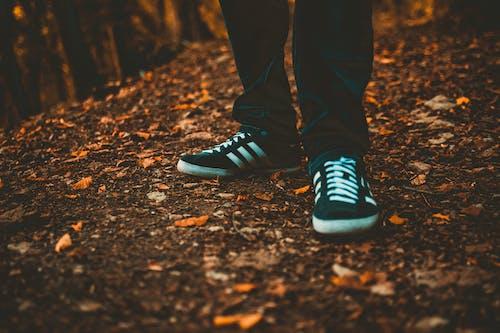 Безкоштовне стокове фото на тему «Кросівки, ноги, сухе листя»