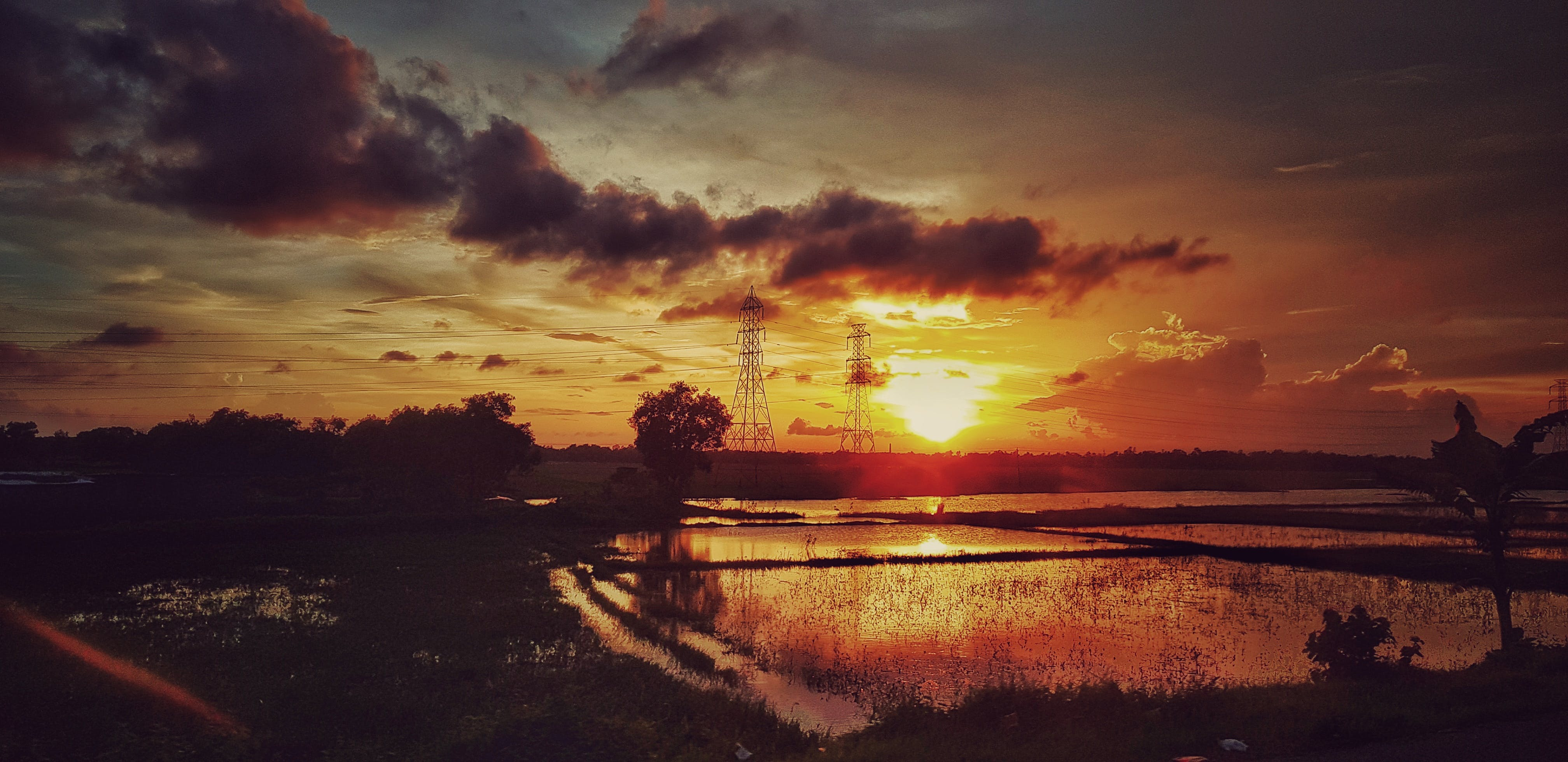 Free stock photo of golden sunset, natural