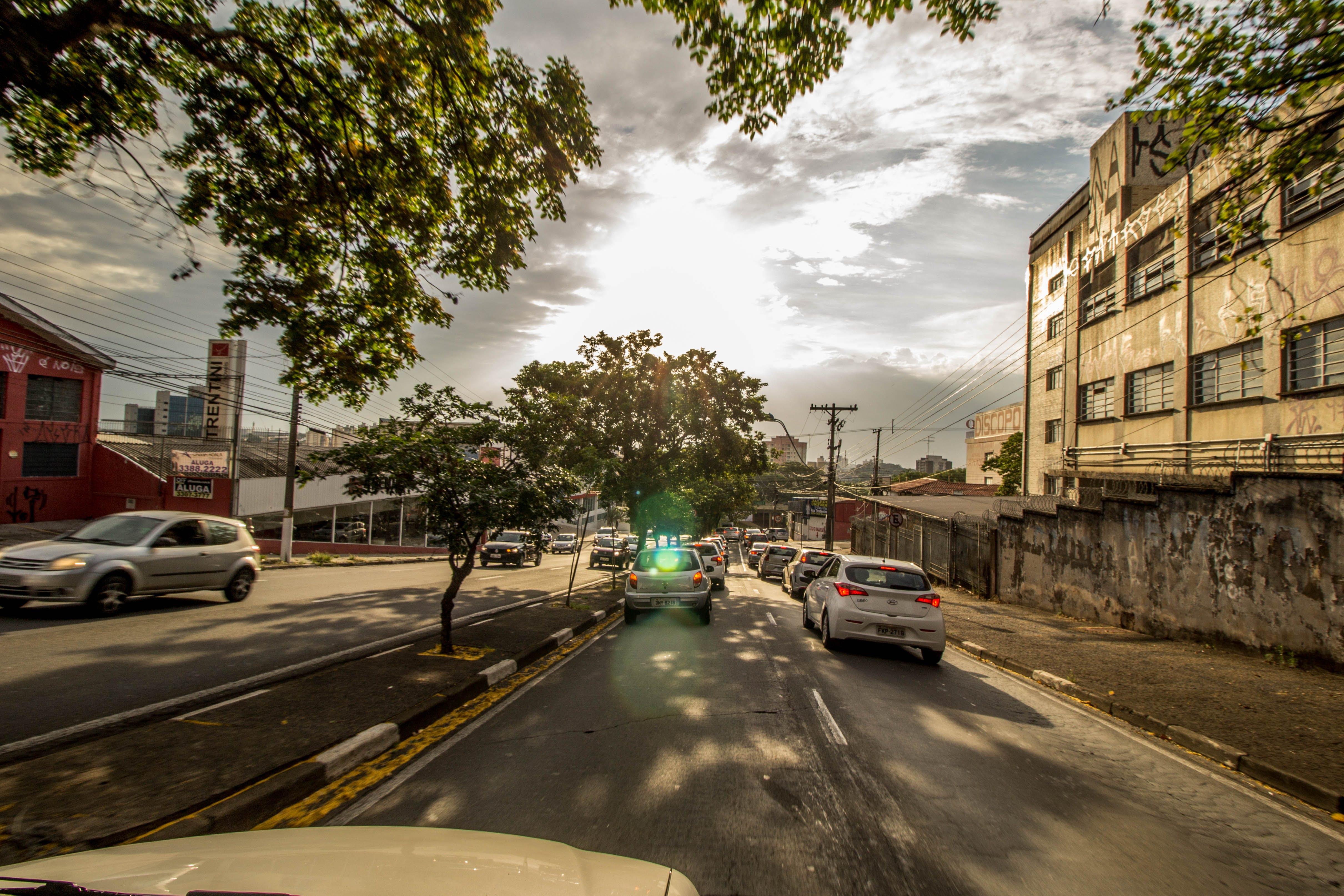 asfalto, automóveis, carros