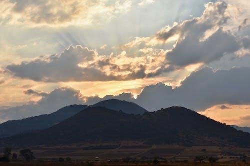 ağaçlar, alan, dağlar, doğa içeren Ücretsiz stok fotoğraf