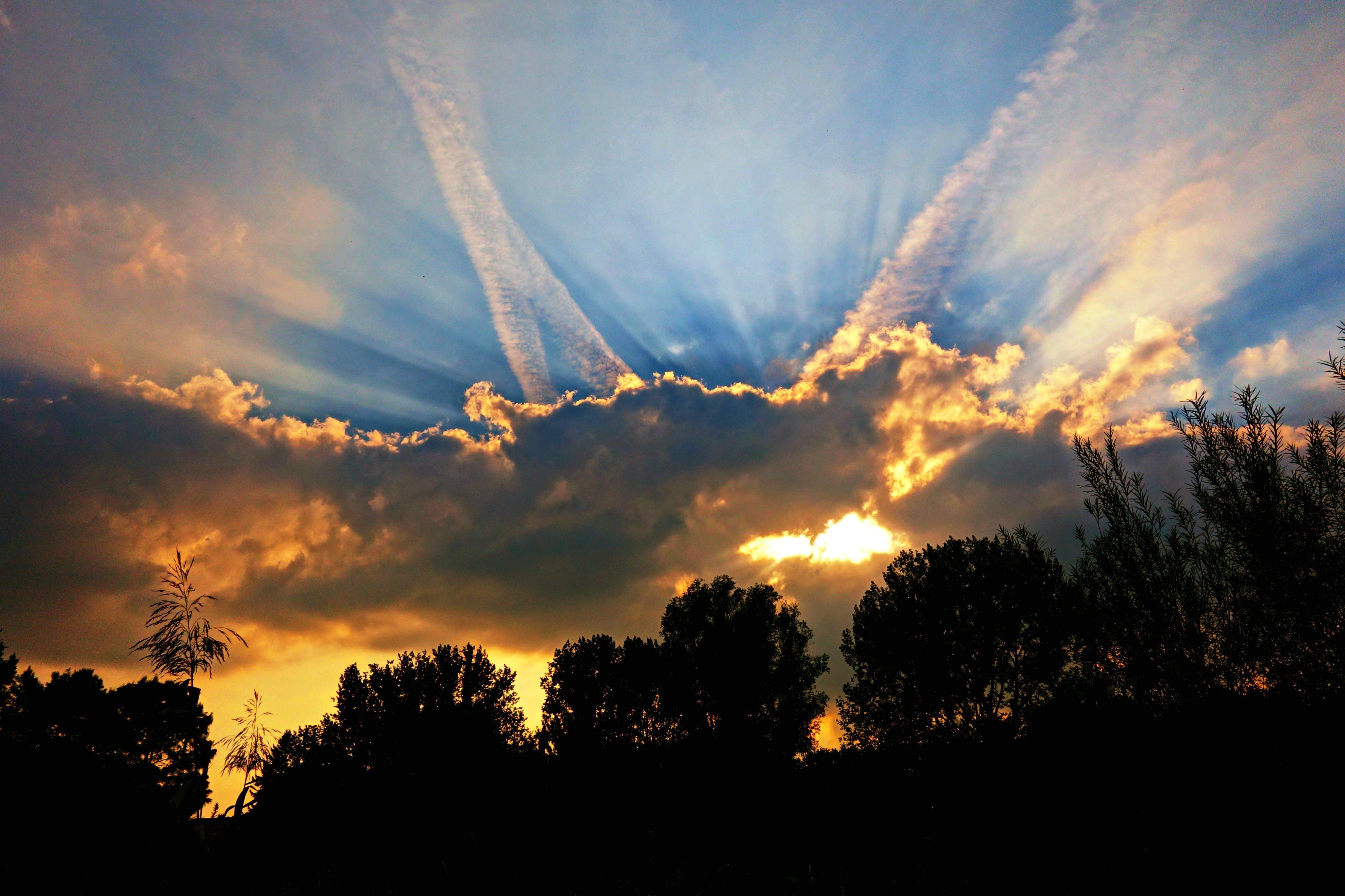 Free stock photo of light, sunset, blue, yellow
