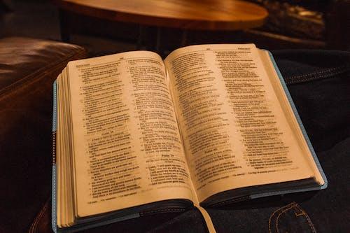 Gratis arkivbilde med bibel