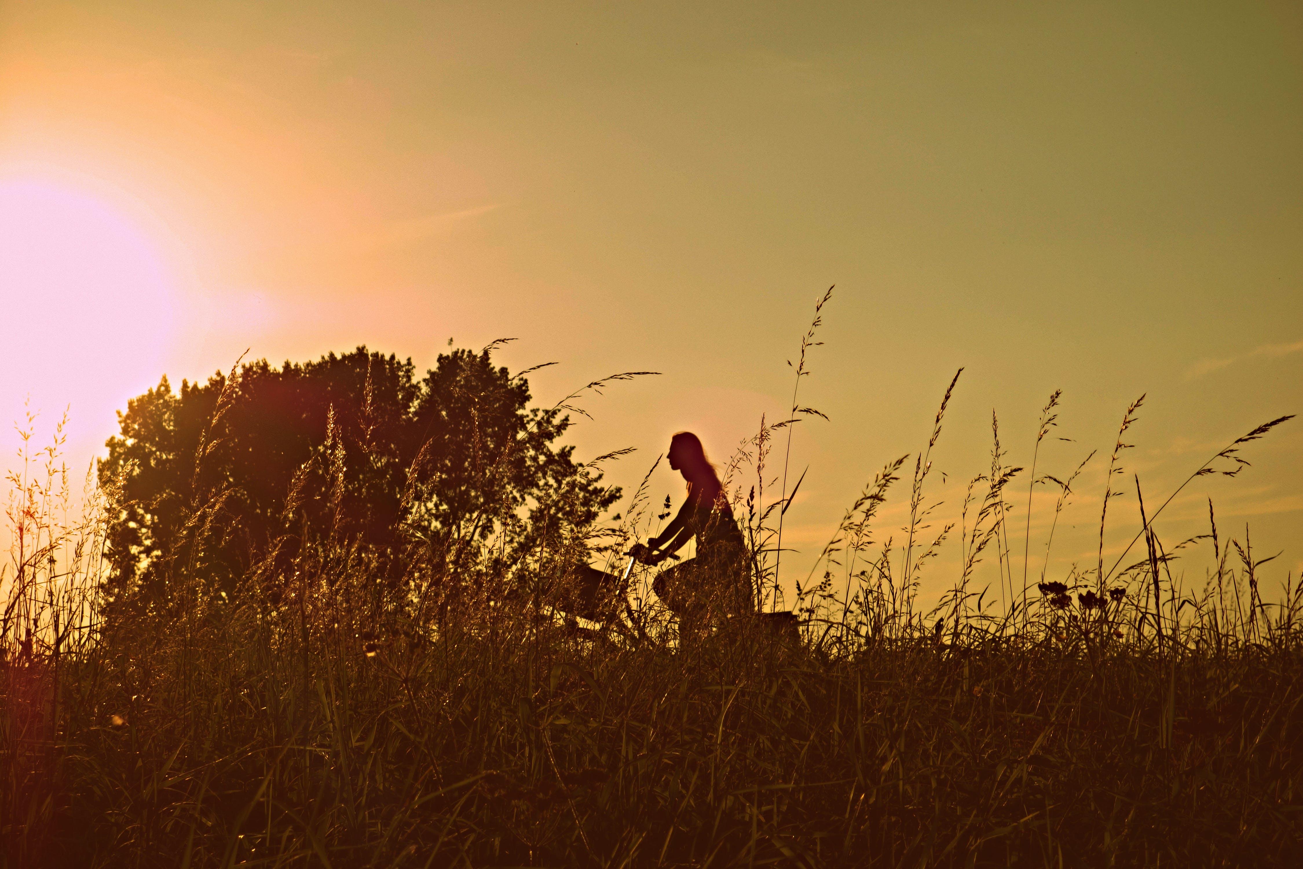 Free stock photo of woman, sun, silhouette, countryside