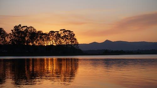 Photos gratuites de arbres, ciel, ciel du soir, coucher de soleil