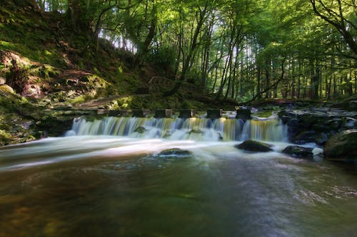 Free stock photo of county down, Northern Ireland, stepping stones, summer