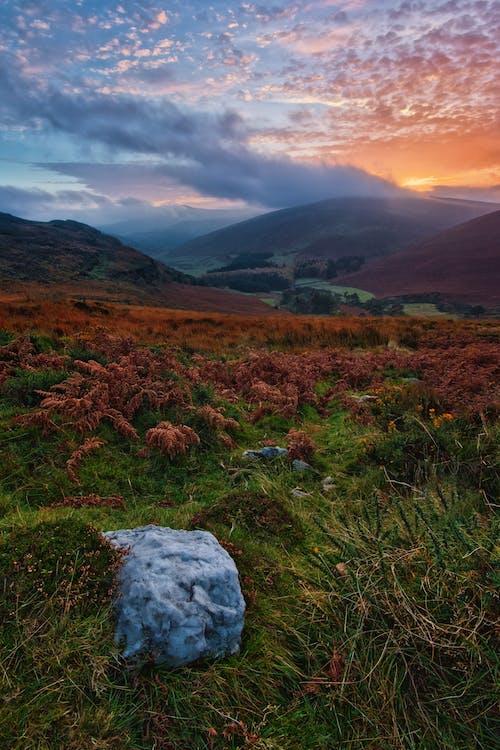 Fotos de stock gratuitas de amanecer, césped, escénico, Irlanda