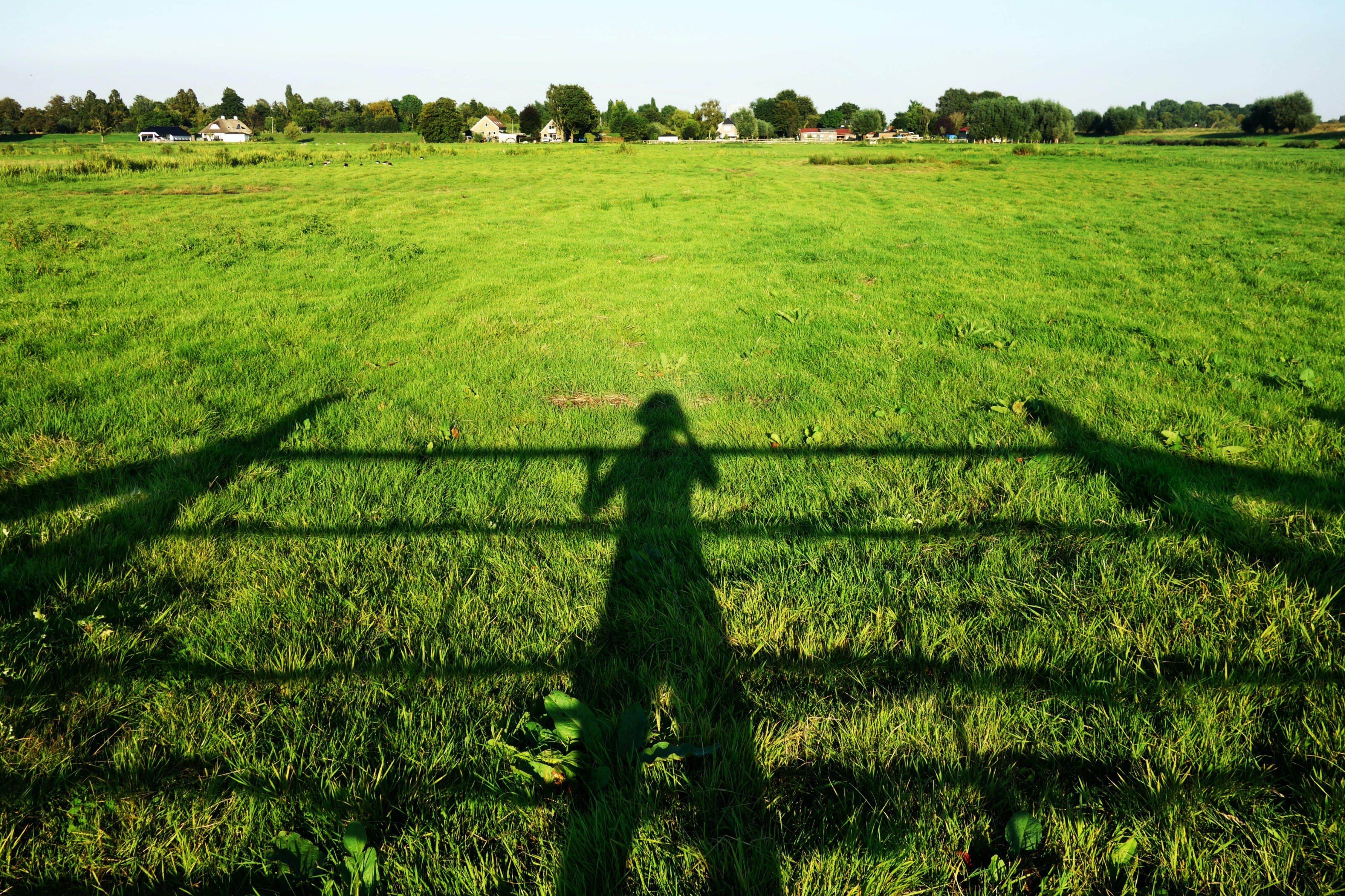 Foto profissional grátis de área, chácara, colheita, ensolarado