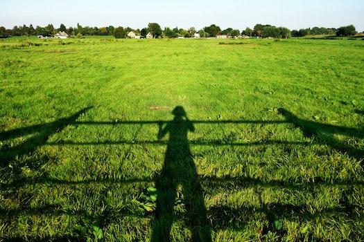 Free stock photo of sunny, field, countryside, farm