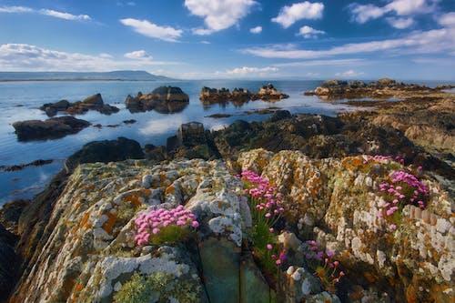 Immagine gratuita di acqua, baia, cielo, colore