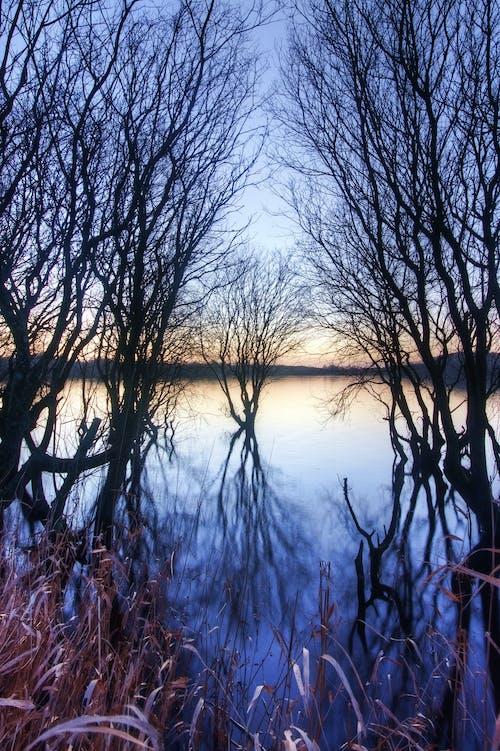 Gratis lagerfoto af lisburn, nordirland, refleksion, solnedgang