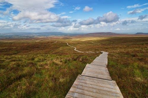cuilcagh, cuilcagh way, 北爱尔兰, 大理石拱门 的 免费素材图片