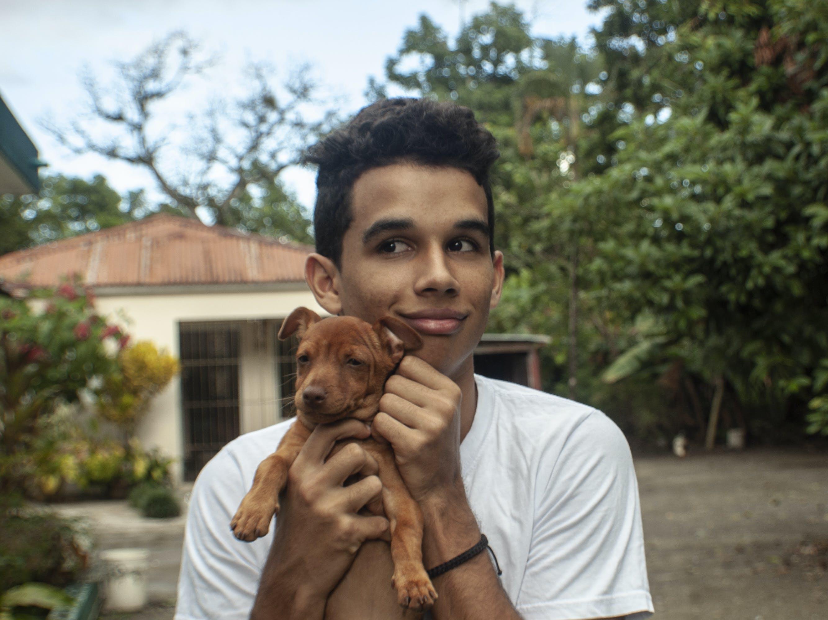 Free stock photo of asociación, best friends, retrato de animal