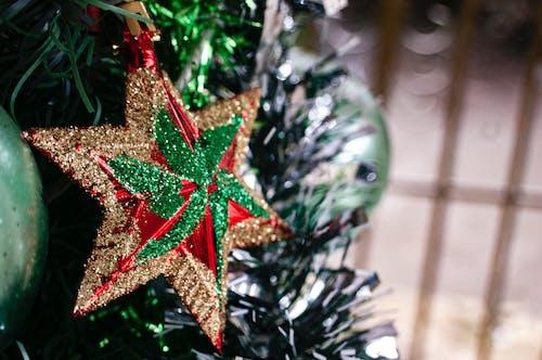 Foto d'estoc gratuïta de estrella, nadal