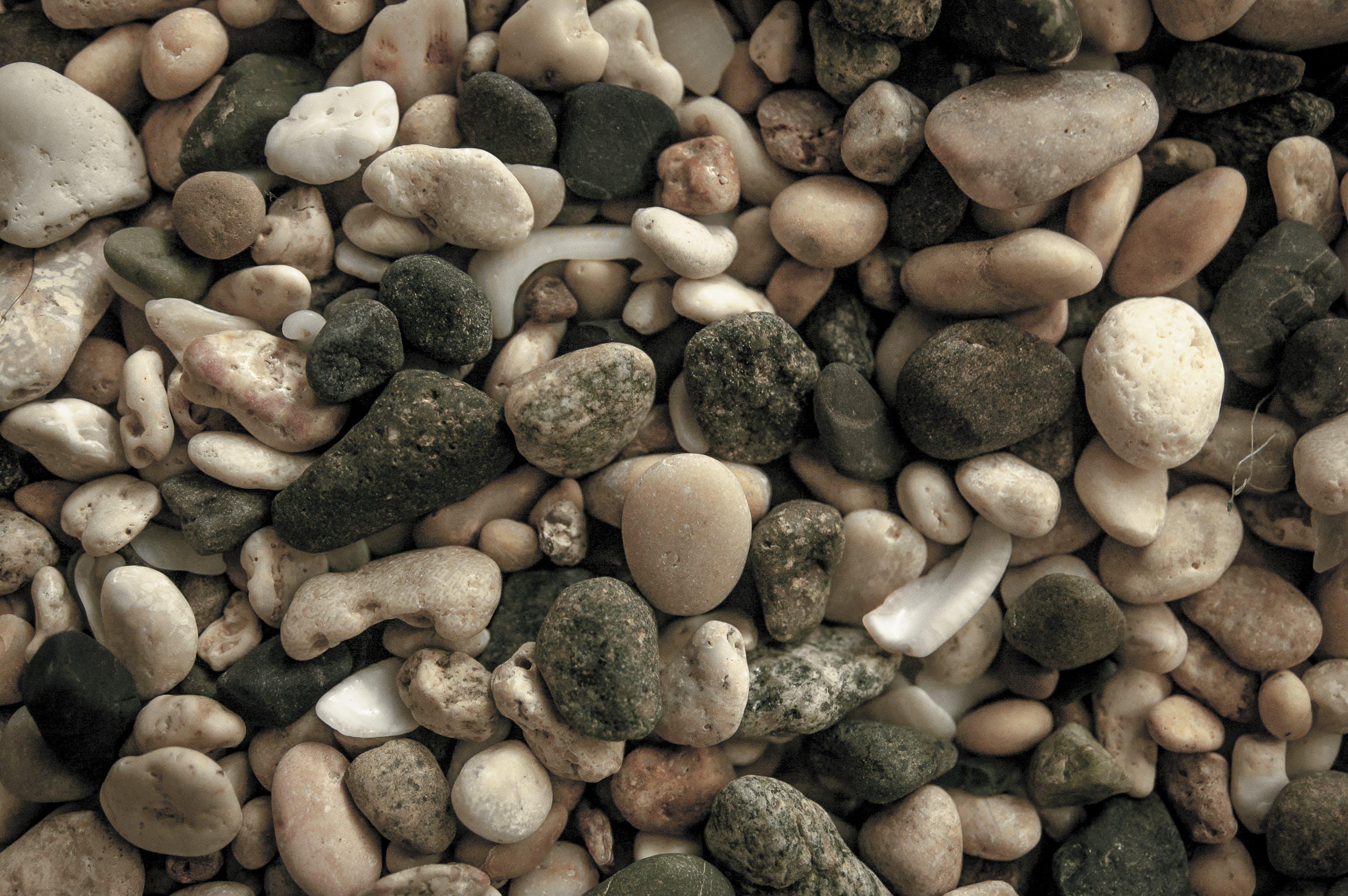 Free stock photo of Mossy rocks