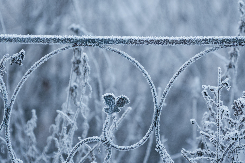コールド, シーズン, バリア, 冬の無料の写真素材