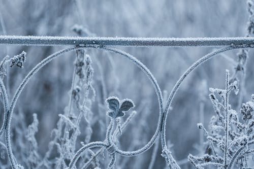 Free stock photo of barrier, cold, freezing, metal
