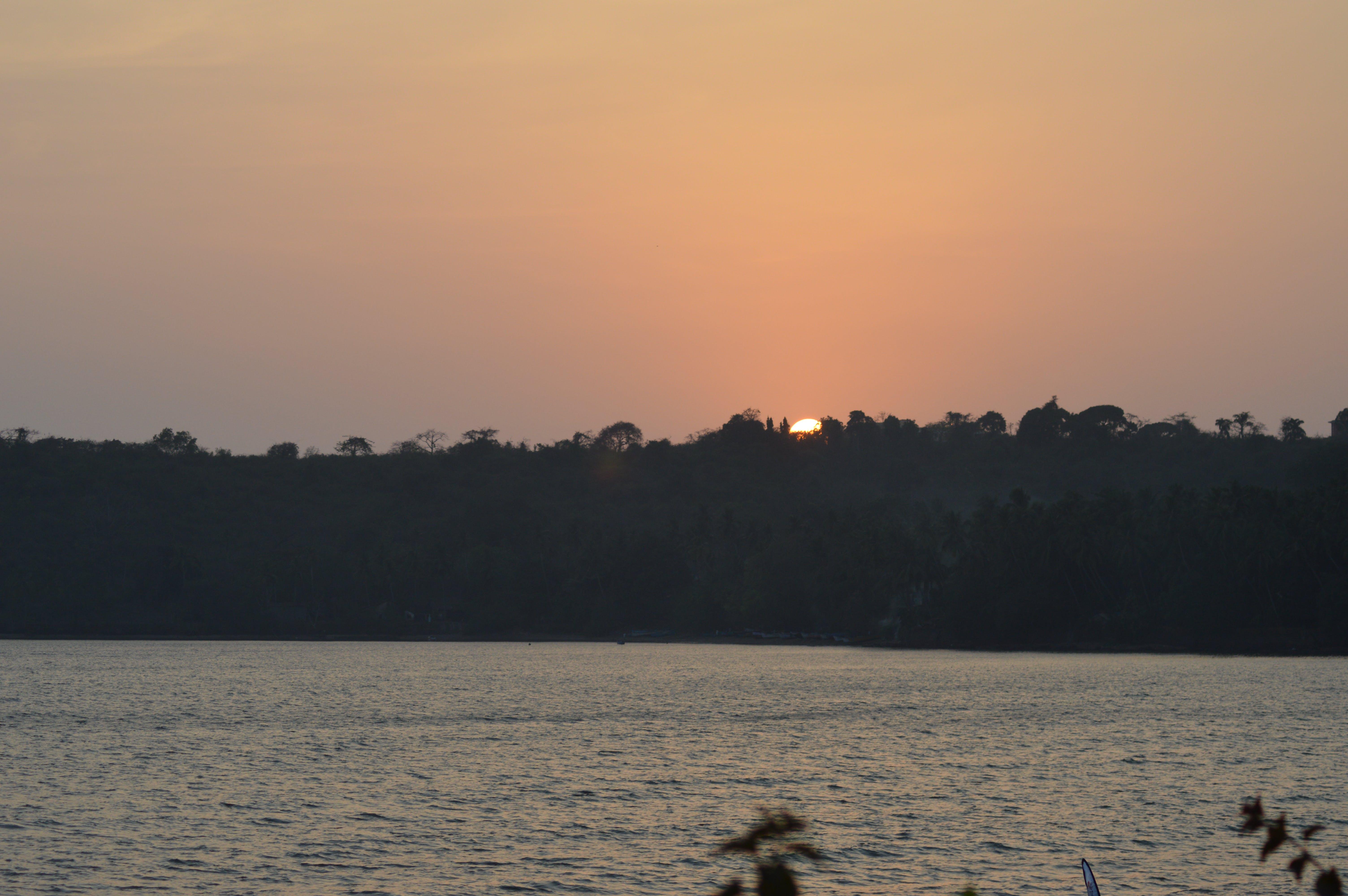 Free stock photo of beach, goa, sunset, trees