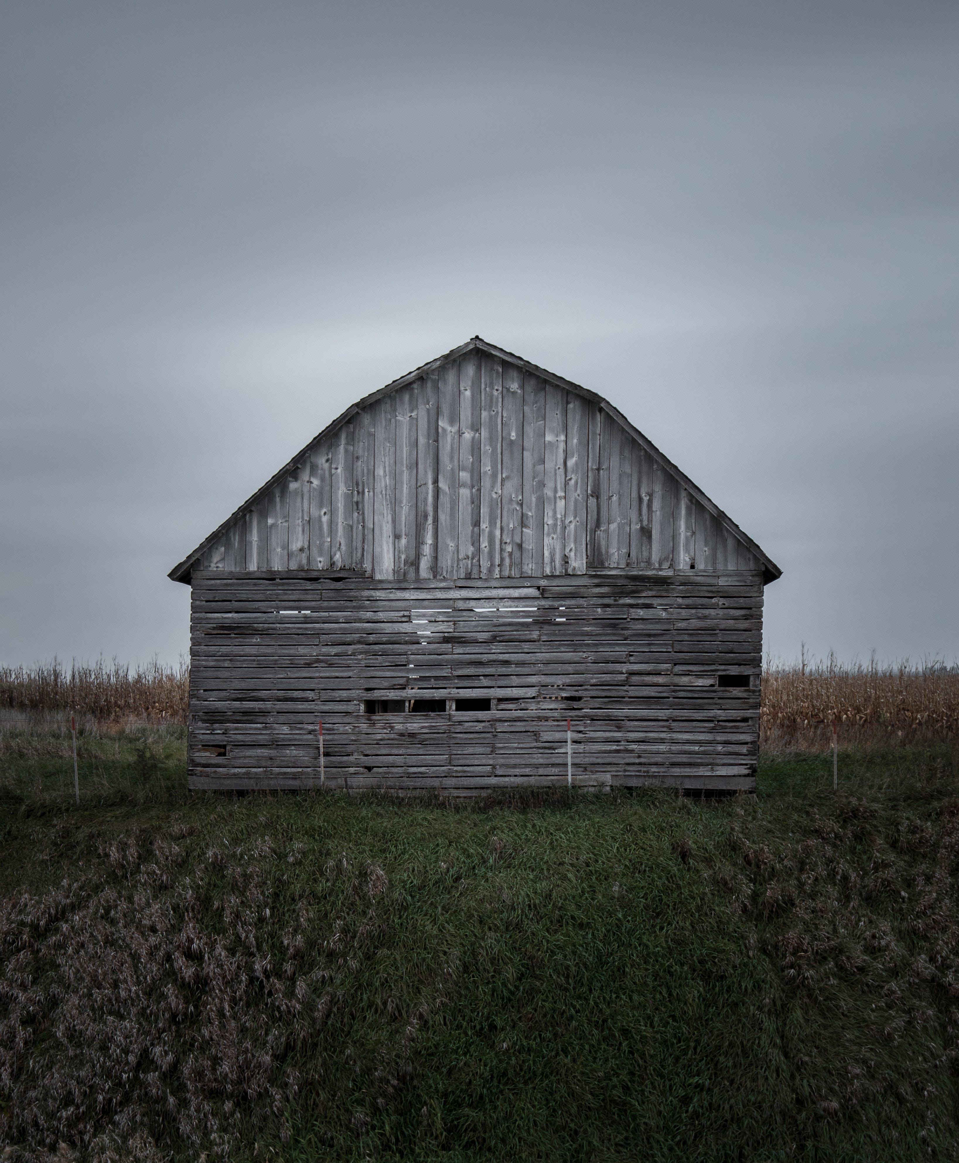 Ingyenes stockfotó elhagyatott, fából készült, farm, fű témában