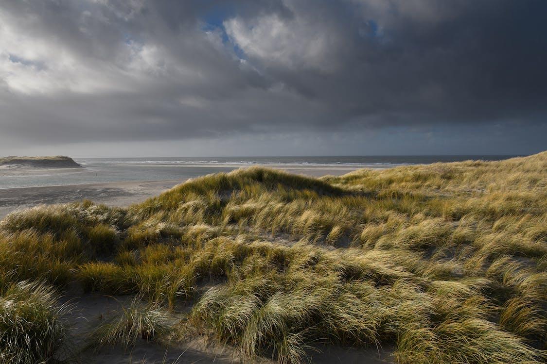 ακτή, αμμοθίνες, αμμόλοφοι