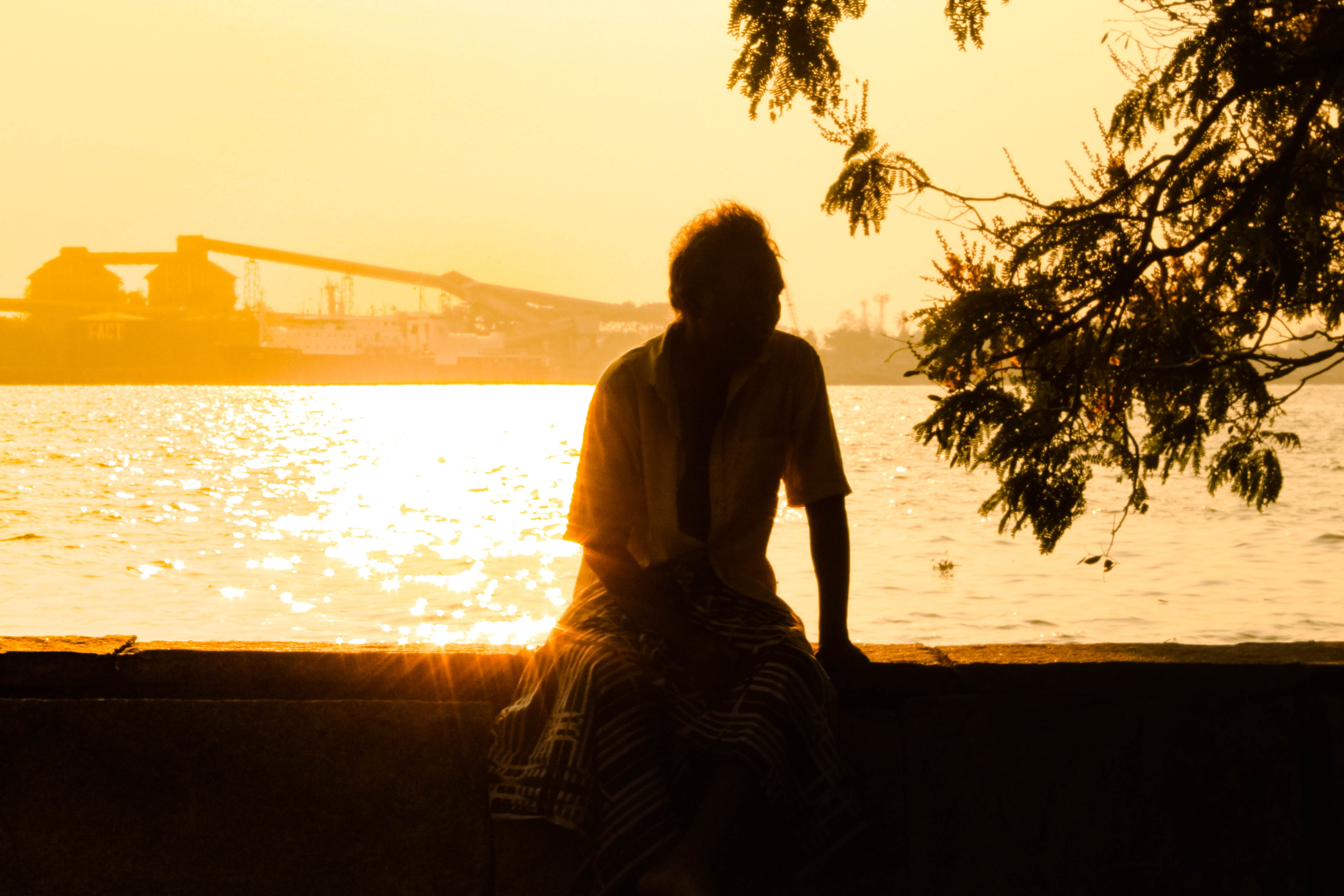Free stock photo of asian man, oceanside, sunset beach