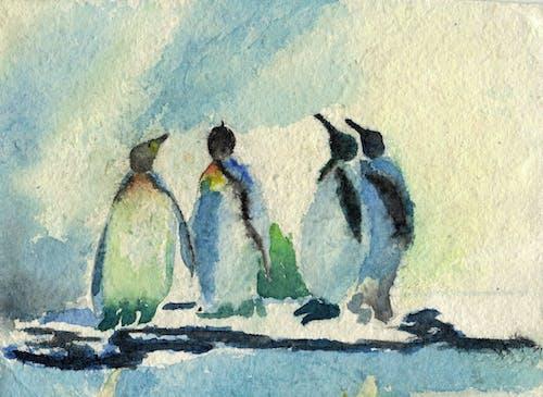 Free stock photo of animals, antarctic, antarctica, blue