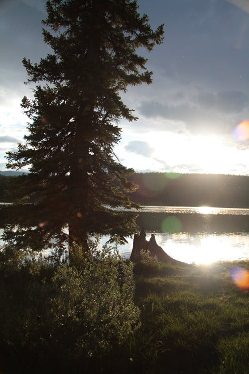 Fotos de stock gratuitas de Alberta, Canadá, puesta de sol