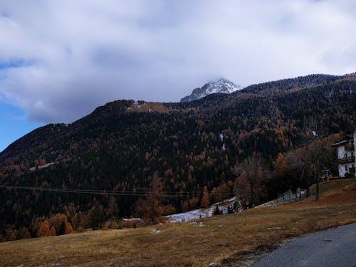 Gratis lagerfoto af bakke, bjerg, dagslys, dal