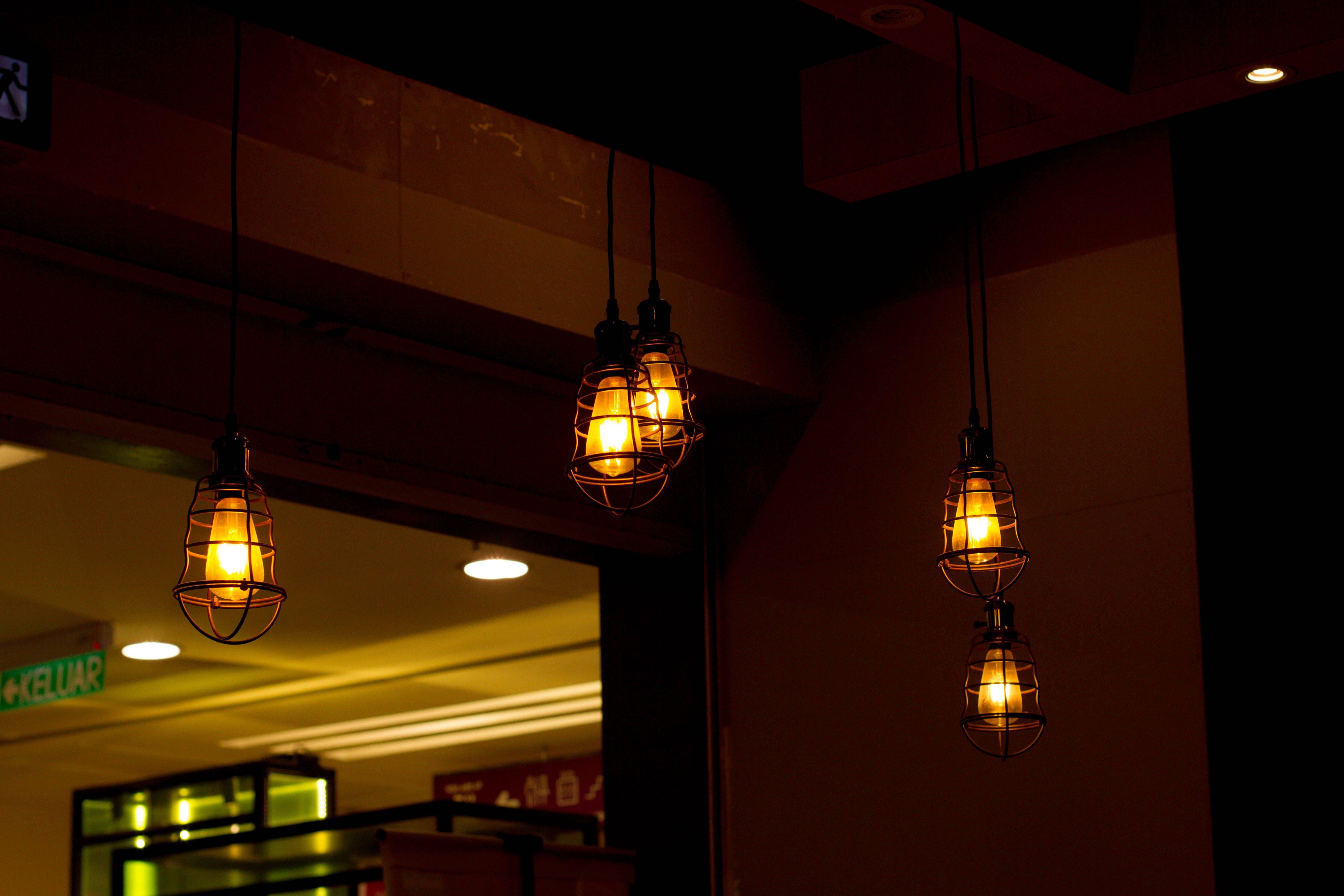 Free stock photo of aromatic, dark, dinner