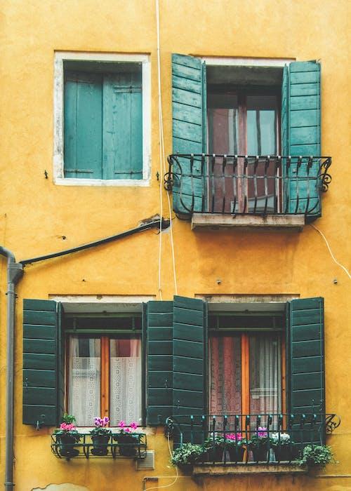 คลังภาพถ่ายฟรี ของ ชัตเตอร์, ต้นไม้, ผนัง, หน้าต่าง