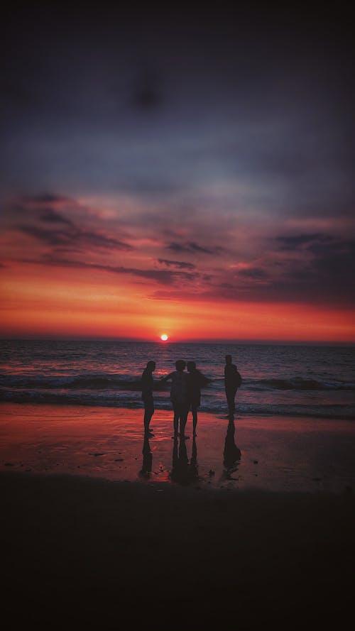 Základová fotografie zdarma na téma #beach #juhubeach #silhoutte #evening # sunset