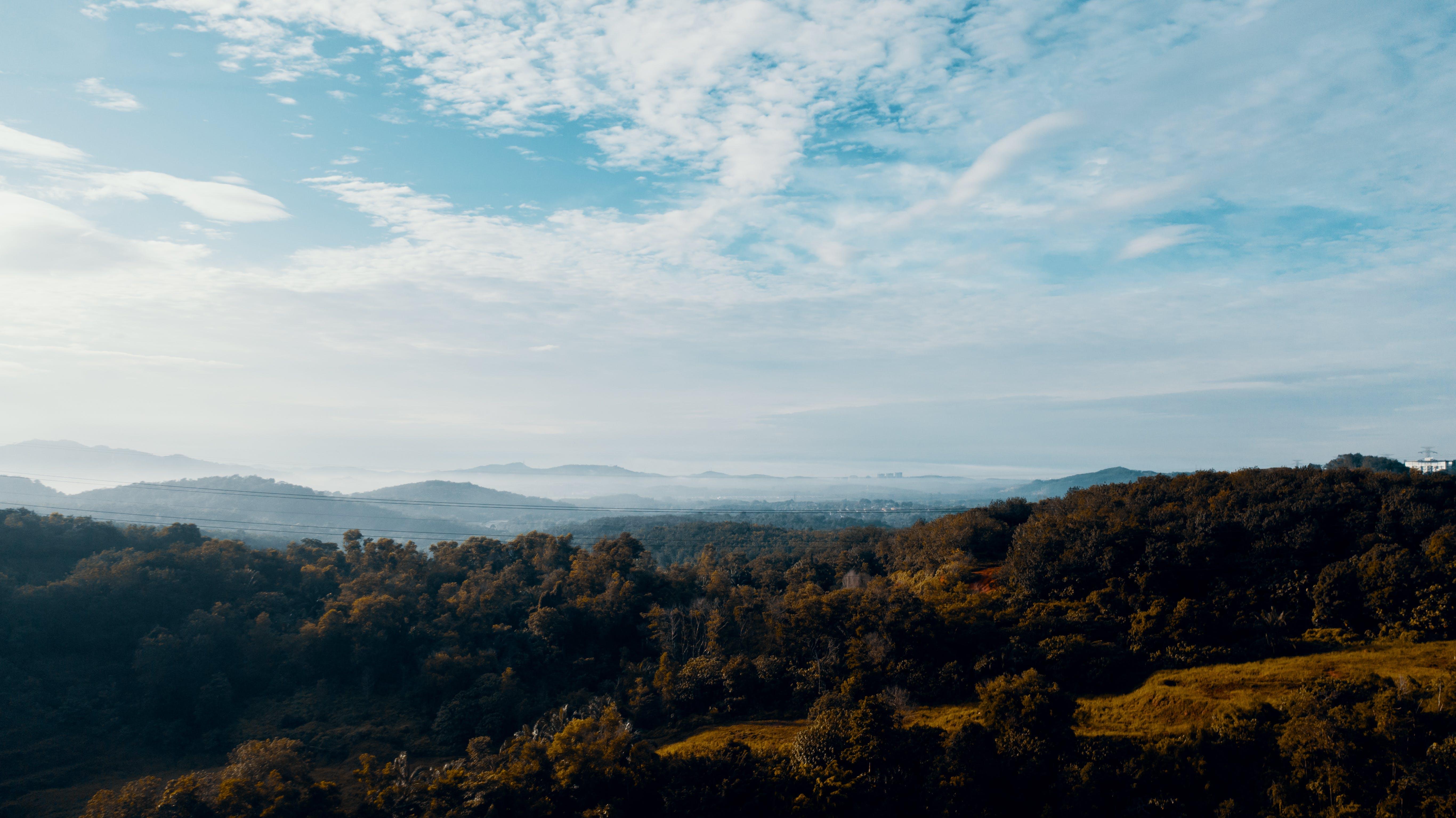 Foto profissional grátis de aerofotografia, árvores, cênico, céu