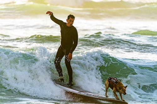 Man Surfing With his Dog