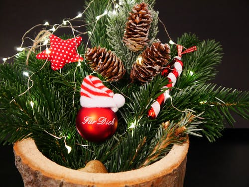 Pine Cones And Red Bauble