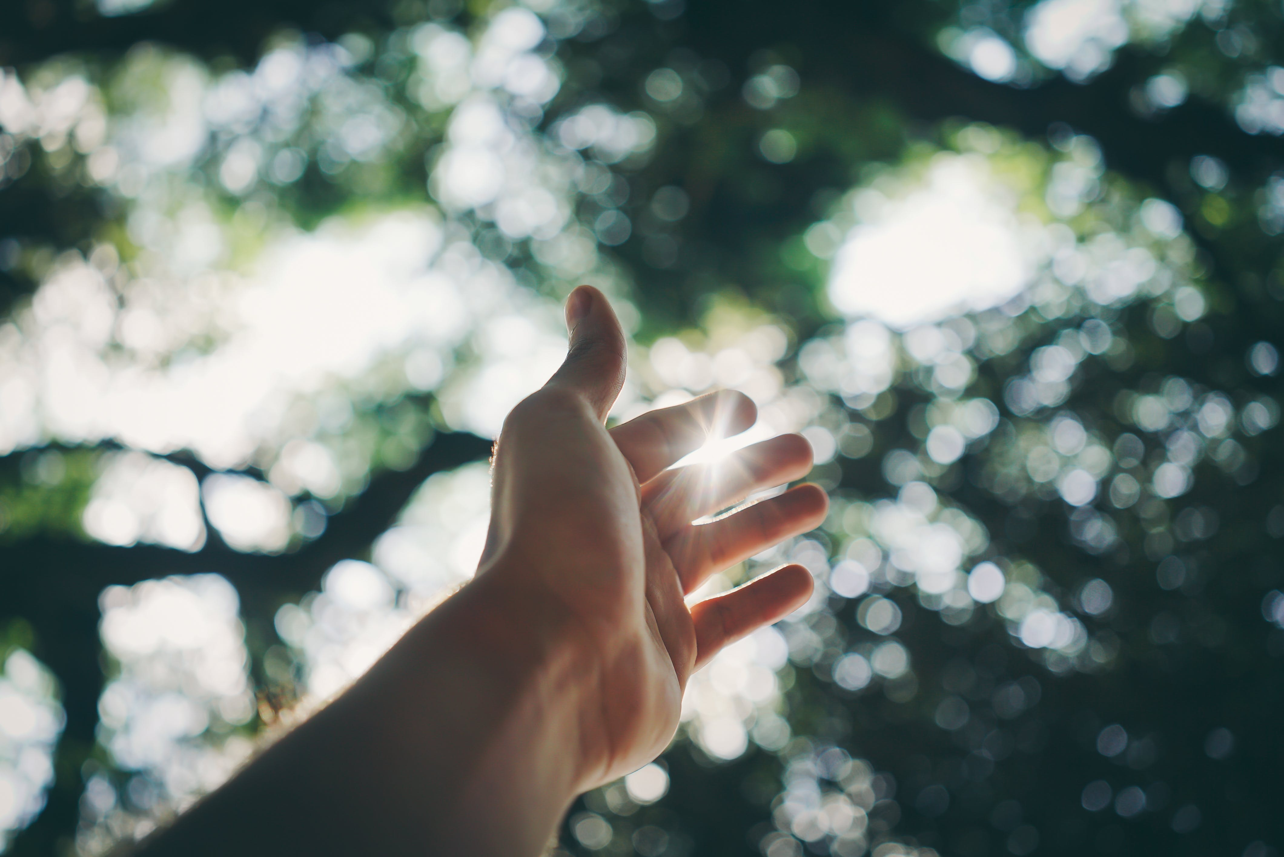 Selective Focus Photography Of Hand