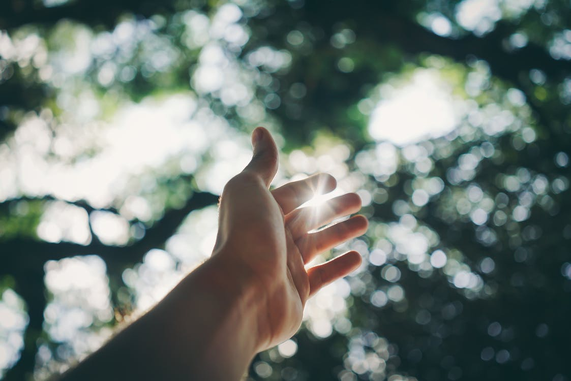 Imagine de stoc gratuită din ajunge la, degete, întinde mâna