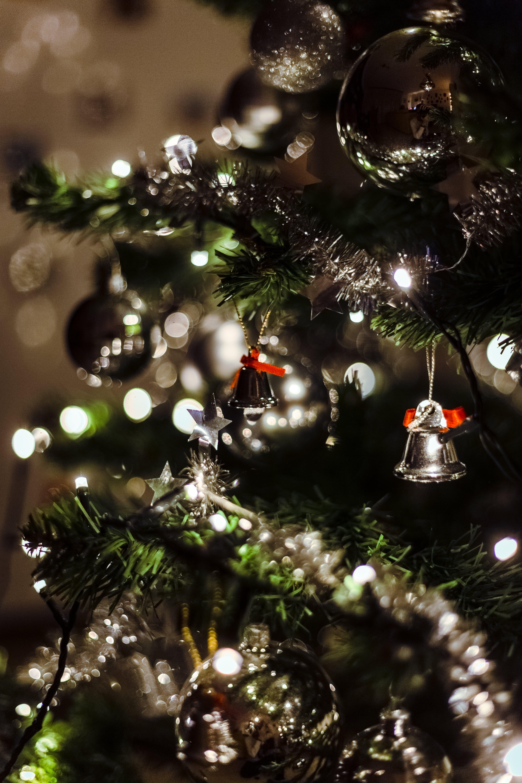 お祝い, ぶら下がり, ぼかし, クリスマスの無料の写真素材