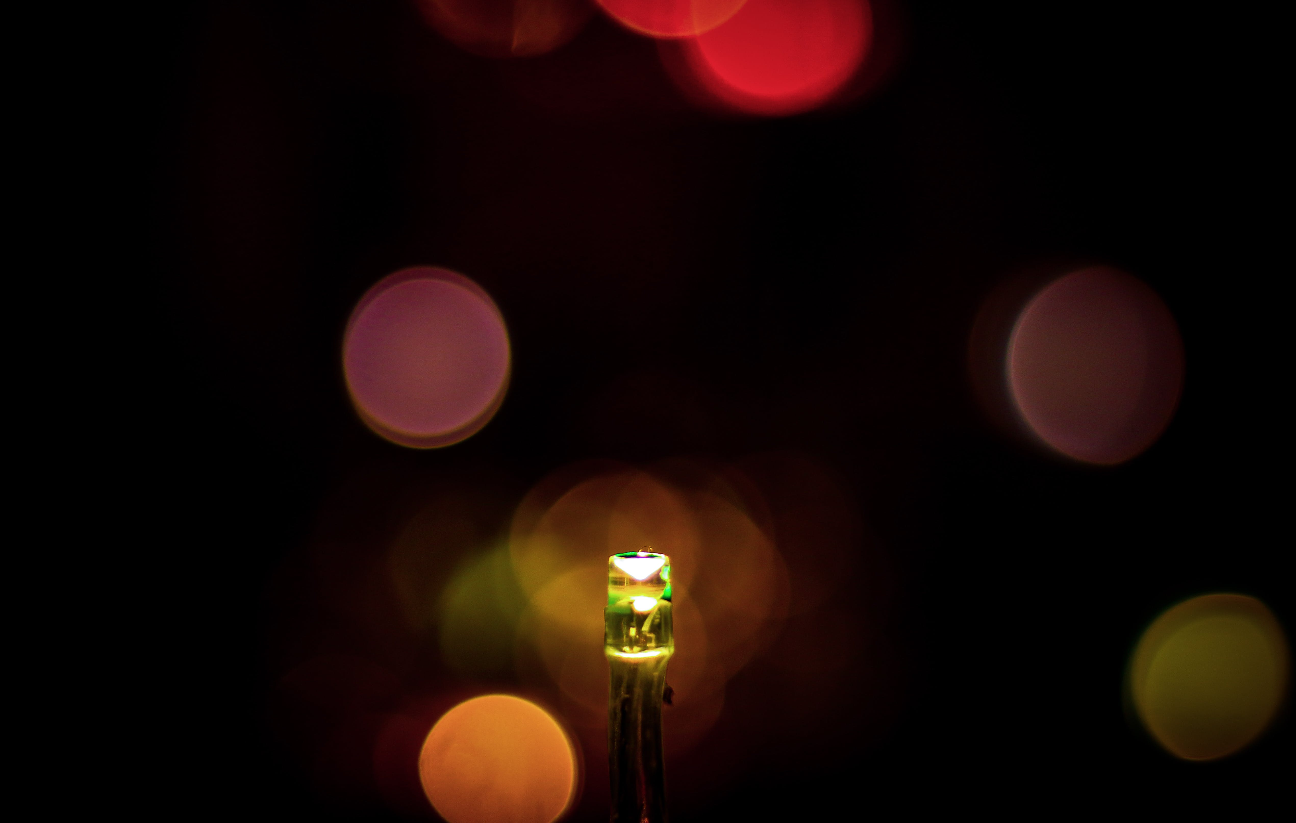 Free stock photo of backlight, bokeh, camera, canon