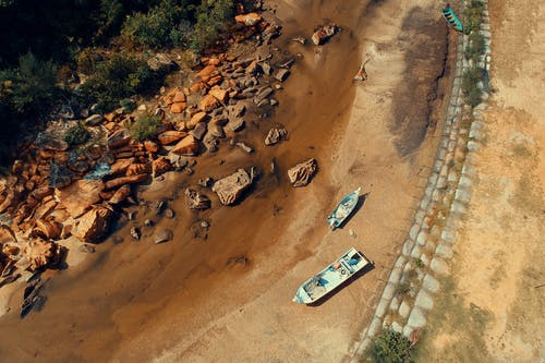 Foto d'estoc gratuïta de aigua, arbres, barques, carretera