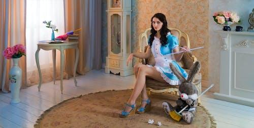 Free stock photo of domestic, dominate, girl, humor