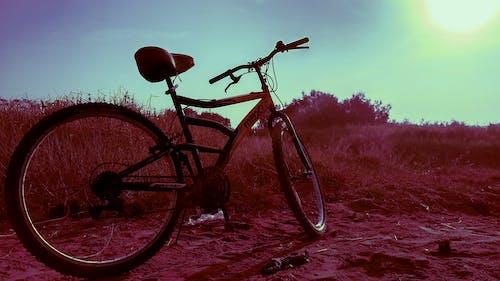 Fotos de stock gratuitas de aparcamiento de bicicletas, aparcamiento de bicis, bicicleta