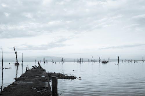 湖码头 的 免费素材照片